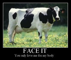 Cow Demotivational by Coocachew