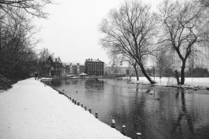 Odense park by crirox
