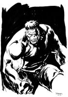 Hulk by stokesbook