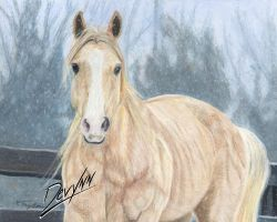 Winter Wonder - Prismacolors by Devynn
