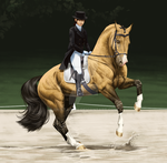 CLOSE UP  -Dressage- by BH-Stables