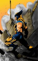 Wolverine colored - Benjamin - Will E. by setokaiba200x