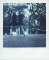 SX-70 polaroid 80 of 100 by lloydhughes