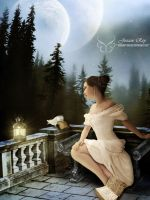 The Letter by Josiane-Rey
