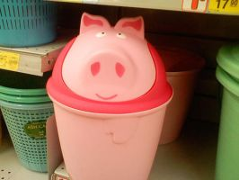 PIGGY DUSTBIN by AbsoluteVodka