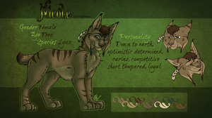 Nicole 2013 Reference Sheet by Nicay