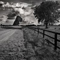 Country Road by stephenrob