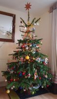 Christmas Tree 2011 1 by BevisMusson