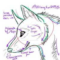 Canine Head Tutorial by chasingzebras