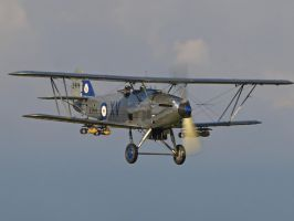 Hawker Hind Pass Old Warden by davepphotographer