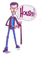 22.01.12 Doctor Who? House by juandapo