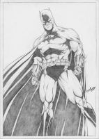 Batman_Pencils by leonartgondim