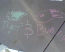 Tiger And Bunny Chalk Drawing! by FMAandNarutofan