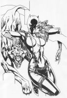 Female Black Panther by Stonegate