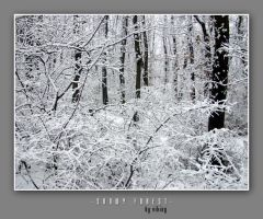 Snowy Forest by vikingexposure