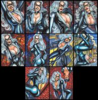 BLACK CAT PERSONAL SKETCH CARDS 2012 by AHochrein2010