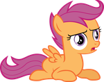 Scootaloo Vector 2 by scrimpeh
