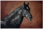 Black Horse - acrylic painting by BLACKNIGHTINGALE81