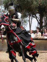 More Knight Joust Stock 024 by tursiart