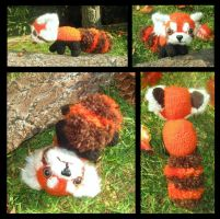 Red Panda by charlieinabox