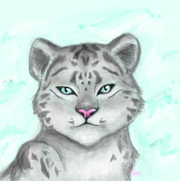 Snow Leopard by liaillii