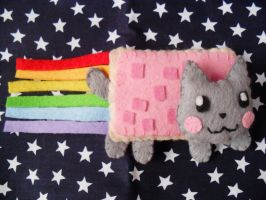 Nyan Cat Plush by vklolita