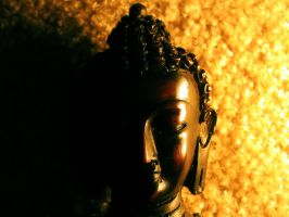 Buddha 1 by meathive