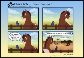 Horsetastic - Good Exercise by DolphyDolphiana