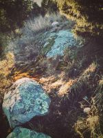 Rocks. by CindyLouWhoXox