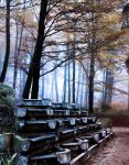 Forest stairs BG by StarsColdNight