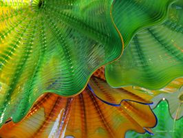 Chihuly Glass 5 by Foozma73