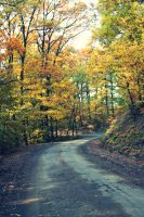 the road by 9008ildike