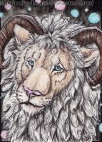 ACEO-TweedPawn by Cally-Dream