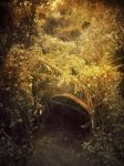 In a hole in the ground... by Izzie-Hill