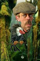 Hugh Laurie - Old Buzzard by RodneyPike
