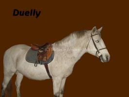Duelly by Mel-at-ne