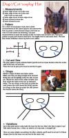 Dog and Cat Hat Tutorial by Cristophine
