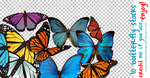 10 Butterfly Stocks by manondesign