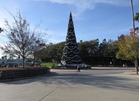 Christmas Tree WDW Hollywood Studios 6 by WDWParksGal-Stock