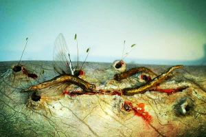 Flying leeches in wound. by Ryo-Says-Meow