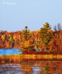 Beauty's of Autumn by PhotographsByBri