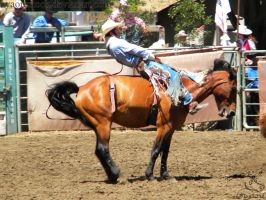 Rowell Ranch Rodeo - 12 by Nyaorestock