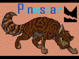 Pinestar by SassyHeart