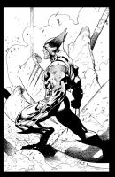 Ryan's wolvie inked again. by antalas