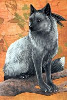 ACEO - Foxfeather by MoonsongWolf