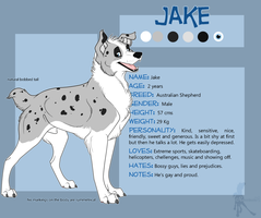 Jake Reference Sheet by faithandfreedom