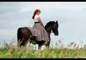 Horse Bogumil 7 by paula2206-photo