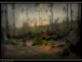 Elf-struck Forest by Xantipa2-2D3DPhotoM
