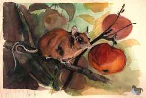 Mouse with apple by OblokMagellana