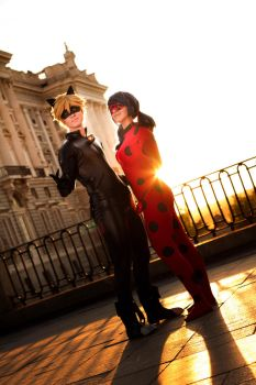 Chat Noir and Ladybug by twinfools